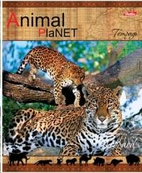 Тетрадь 48л линия Animal Planet